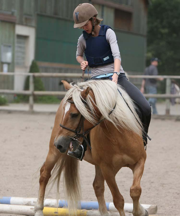 Equitation au village vacances les 4 Vents - Vosges Alsace
