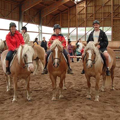 Activité équitation, centre équestre aux 4 Vents Vosges
