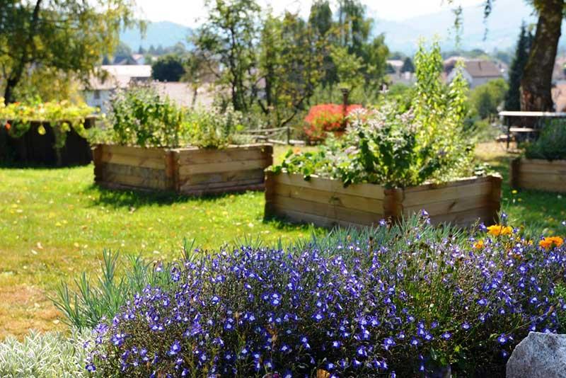 Jardin potager Emil'saveurs du village vacances les 4 Vents