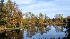 Plateau des Mille étangs Vosges Alsace 4 Vents