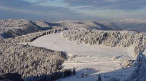Rouge gazon en hiver - Vosges Grand Est