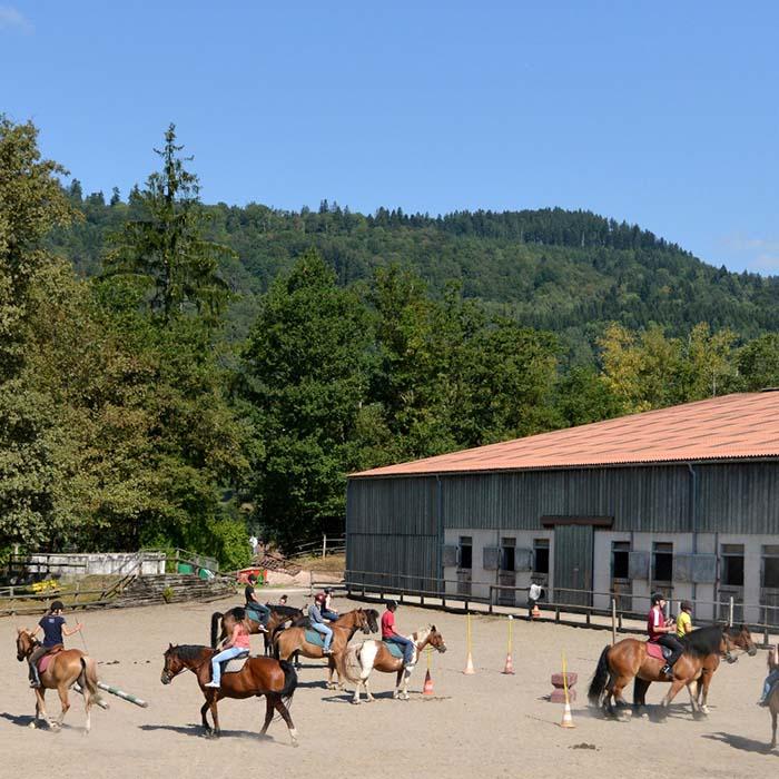 Centre équestre pendant les vacances d'été au village vacances les 4 Vents Vosges