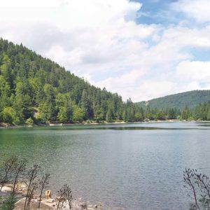 Séjour randonnée : nature estivale dans les Vosges, étang