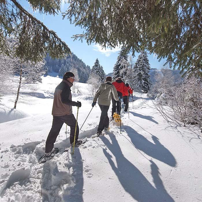 Randonnée raquettes en hiver en individuels - village vacances 4 Vents