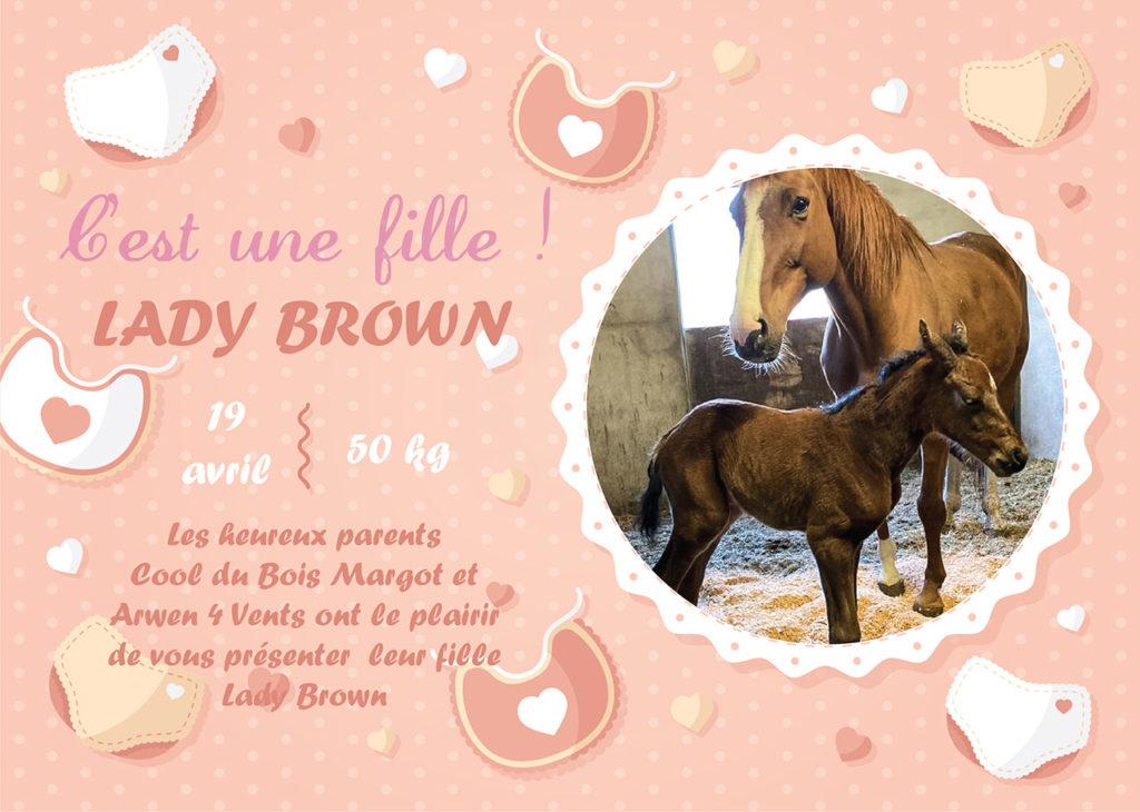 Faire part de naissance Lady Brown
