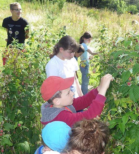 Journée chouette nature avec le club enfant aux 4 Vents